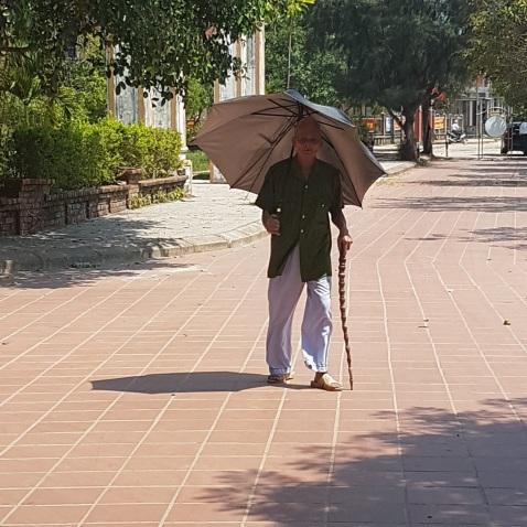 Elegant Vietnamese Gentleman