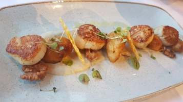 Grilled scallops with cauliflower puree