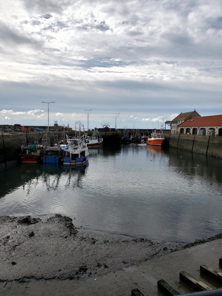 Pittenweem Harbour, Scotland