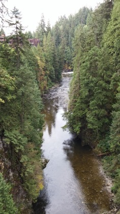 The Capilano River