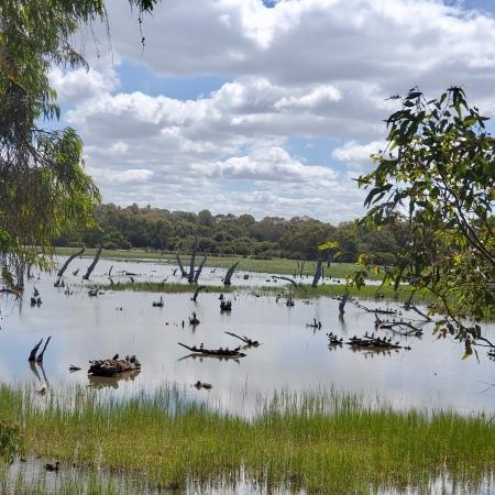 Lake Claremont, Perth, Western Australia